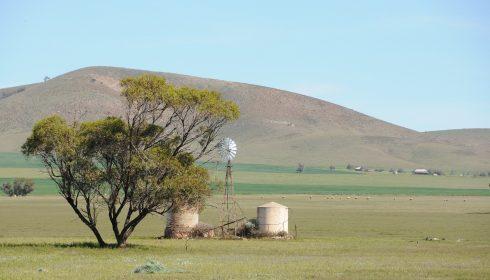 windmill-5786578_1920
